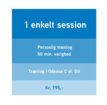 Ønsker du at blive bedre til dine teknikker eller få tilrettelagt en træning? Så er 1 session lige noget for dig.